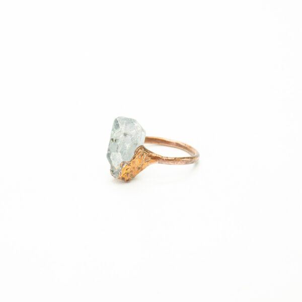 CopperGorgeous_ring-celecstien_0011